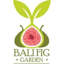 Bali Fig Garden