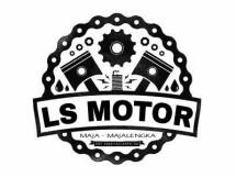 LS Motor
