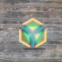 Tokodiskpedia