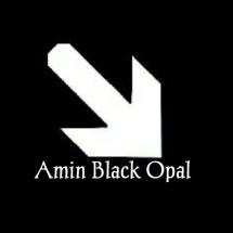 Amin black opal
