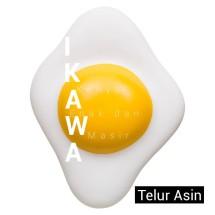 ikawa12