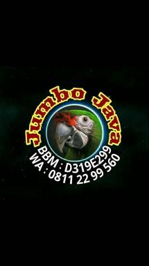 Jumbo Java