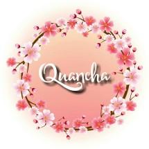 Quancha