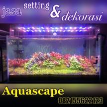 Aquascape Samarinda