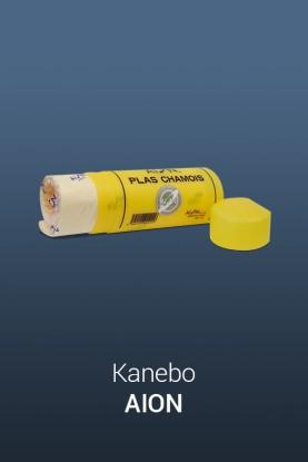 Kanebo AION