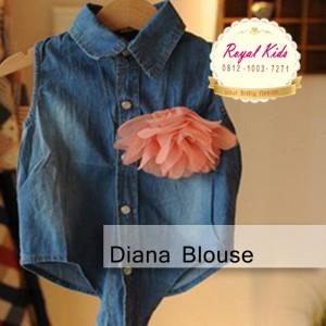 Diana Blouse