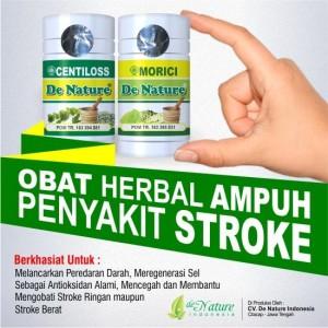 Obat Stroke-struk-Lumpuh Sebelah Darah Tinggi Vertigo Herbal De Nature