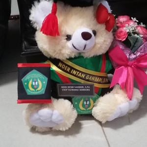 boneka wisuda teddy bear cream atau coklat lengkap 27cm