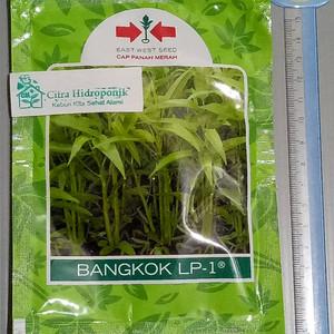 Kangkung Bangkok Harga Terjangkau Tokopedia