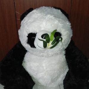 Kain Produk Baru Boneka Panda - Katalog Harga Terbaru dan Terlengkap -.  Source e4a9f26fae