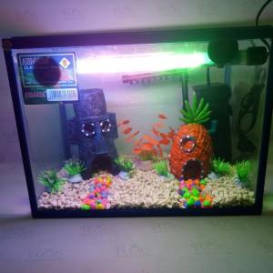 Paket aquarium ARMADA ukuran S