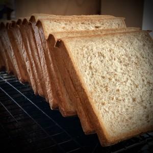 Toast Bread Wholemeal - Roti Tawar Gandum