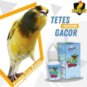 Jual Sup Plus Bird Vitamin Penggacor Burung Kenari Jakarta Utara Konslet Official Tokopedia
