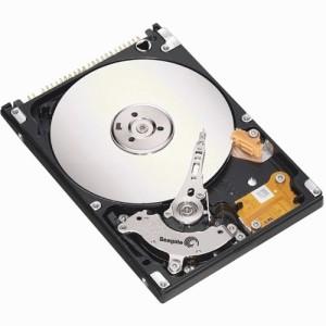 Seagate Momentus (ST9500325AS) - 500 GB, SATA2, 5400 RPM