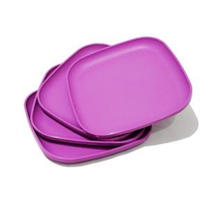 Tupperware Breakfast Plate
