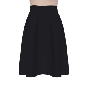Basic Flare A Line Skirt