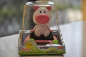 MOVING PIGGY