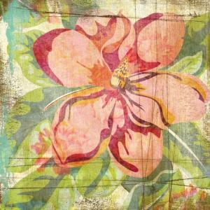 sublime - ACS_D226_Flower