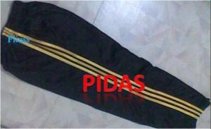 Pidas Training
