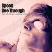 Blind Spoon