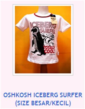 OSHKOSH ICEBERG SURFER