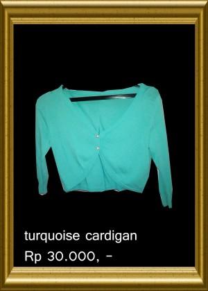 Turqoise Cardigan