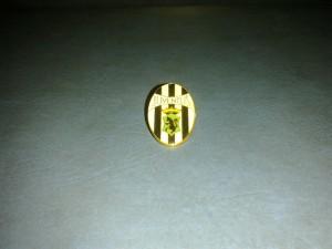 Pin - Juventus