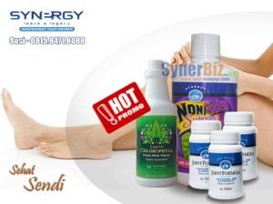 Nutrisi Herbal keSehatan Sendi