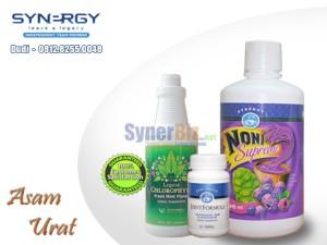 Nutrisi Herbal ASAM URAT