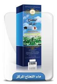 Air Extrax Daun Mint Natural 300 ml