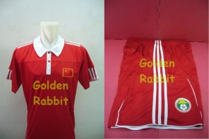 Jersey World Cup 2010 China Home