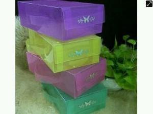Kotak Sepatu Transparan Basic M Full Colours