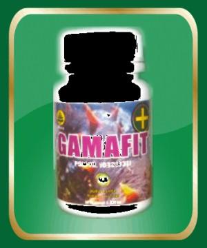 Gamafit Plus Nurusy Syifa 60 Capsule