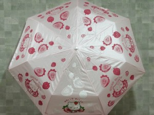 Cartoon Umbrella..