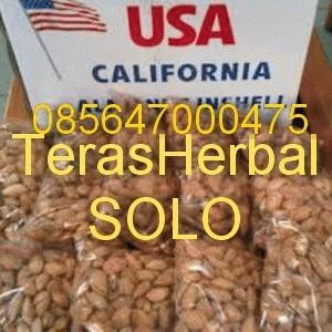 Almond Roasted (Kacang Panggang) USA