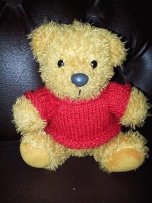 Boneka bear sweater merah