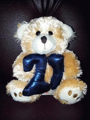Boneka bear 21 merk Memory lane