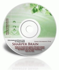 BRAINWAVE TERAPI HIPERAKTIF / ADHD, FOKUSS DENGAN GELOMBANG OTAK