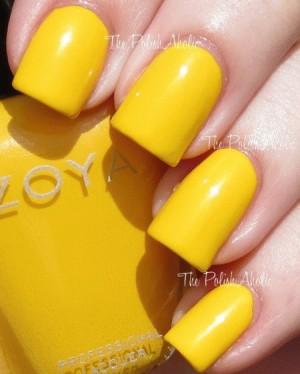 Zoya - Darcy