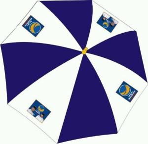 Payung Partai