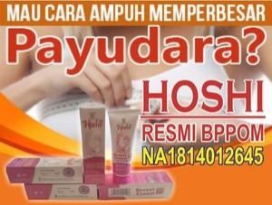 Produk HOSHI ENLARGEMENT BREAST CREAM BPPOM