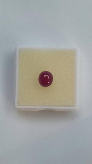 Grosir Murah Batu Cincin Natural Ruby Merah
