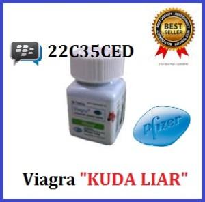 jual obat kuat sex pria perkasa tahan lama viagra usa 100mg cap