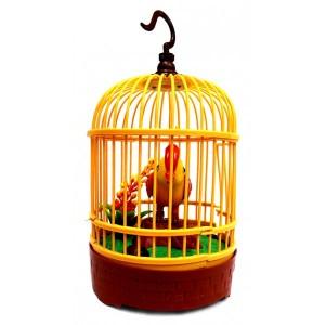 Burung Kenari Dalam Sangkar Ukuran Kecil