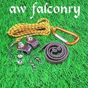 harga Set Falconry ukuran Celepuk (burung hantu kecil) Tokopedia.com