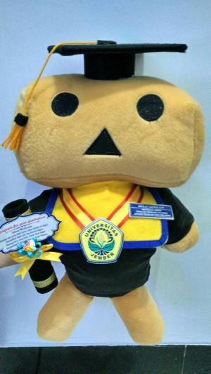 Boneka Wisuda Danbo 40cm Ber-SNI