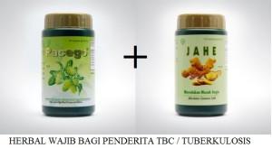 Pesantren Blogger Bisnis Online Syariah Tbc Vs Mengkudu Dan Jahe