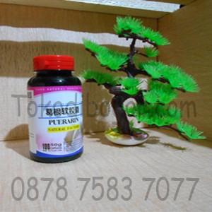 Puerarin Supplemen Pembesar &pengencang Payudara Daftar Harga Source · Obat Suplemen pembesar pengencang payudara PUERARIN SOFT