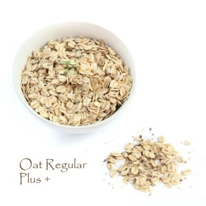 Oat Regular Plus+ 900 gram