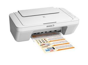 harga PRINTER CANON PIXMA MG2570 ( Print Scan Copy) Tokopedia.com